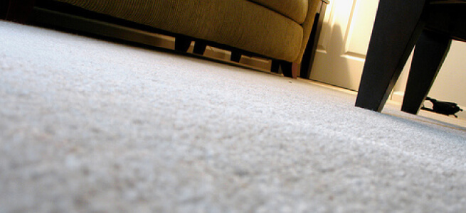 Easy Carpet Cleaning Tips Remove Stains And Odours